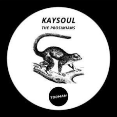 KaySoul - The Prosimians (Dark Art Dub)